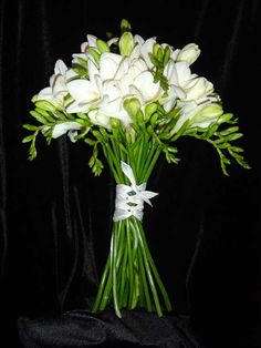 Google Image Result for http://1.bp.blogspot.com/-FsCn88yQqi8/TV-Y8Dsev3I/AAAAAAAABJc/0pwxYs4CEaY/s1600/white_freesia_bouquet.259135223_large.jpg