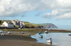 Newport, Pembrokeshire: my favourite place in the UK, can't wait to go again in July. Pembrokeshire Wales, Places Of Interest, South Wales, Newport, Britain, Travel Inspiration, To Go, England, Europe