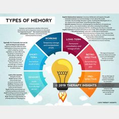 Types of memory - sensory memory - short-term memory - working memory - long-term memory - retrospective memory - prospective memory - visualizing memory and the brain - speech therapy materials for adults - Therapy Insights - Therapy Fix Memory Psychology, Psychology Notes, Colour Psychology, Psychology Degree, Health Literacy, Health Education, Memory Strategies, Court Terme, Adhd