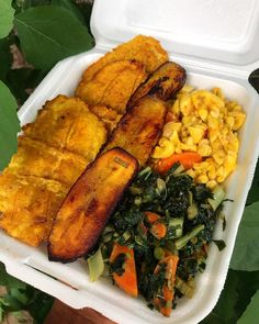 might have to start serving breakfast because my lunch; sautéed Ackee, Stir Fried Veggies with Green Pressed plantain and fried plantain Veggie Jamaican Patties, Jamaican Patty, Indian Foods, Indian Food Recipes, Vegan Recipes, Fried Plantain, Vegan Essentials, Veggie Stir Fry, West Indian