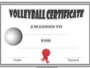 A variety of free printable volleyball certificate templates. Many more free sports awards and award certificates on this site. Printable Certificates, Certificate Templates, Templates Printable Free, Free Printables, Life Coach Quotes, Life Coach Certification, Christian Life Coaching, Sports Awards, Coaching Volleyball