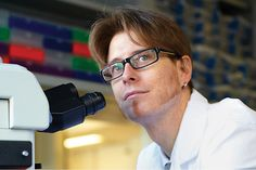 Tumor DNA in Bloodstream May Yield New Cancer Insights