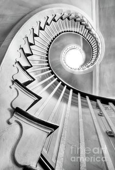 'Spiral Staircase Lowndes Grove' by Dustin K. Ryan