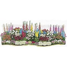 Endless Bloom Perennial Garden plan and plants How does my garden grow