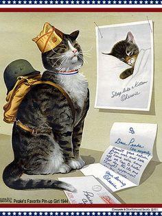 Hero Cats Russia World War