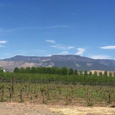 View from Mesa park winery, Grand Junction.