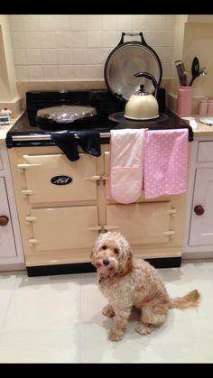 AGA and I want the dog too! Aga Kitchen, Kitchen Items, Cottage Kitchens, Dream Kitchens, Aga Stove, Aga Range, Solid Fuel Stove, English Country Kitchens, Kitchens