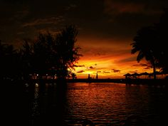 sunset silhouette photography by the poolside at marriot resort and spa miri sarawak malaysia