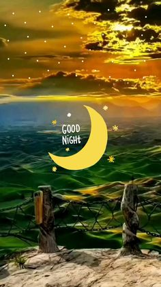 Good Night Love Messages, Beautiful Good Night Images, Good Morning Beautiful Quotes, Cute Good Night, Good Night Greetings, Good Night Gif, Good Morning My Love, Good Night Wishes, Good Night Sweet Dreams