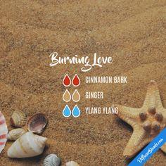 Burning Love - Essential Oil Diffuser Blend