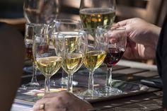 Alitalon Viinitila, Wine Glasses | by visitsouthcoastfinland #visitsouthcoastfinland #wine #viini #wineyard #viinitila #Lohja #Finland