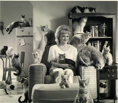 Cat lady....that will be me 50 years from now...except the photo will be in color. & Cat in Halloween http://www.pinterest.com/pin/88875792622566415/