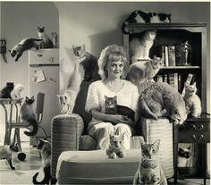 Cat lady....