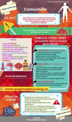 Nursing, Study, Science, Health, Medicine, Anatomy, Studio, Health Care, Investigations