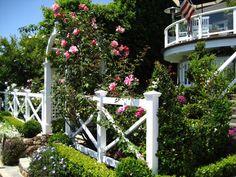 English Garden - Entree Arch w climbing rose