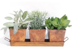 Galvanized Herb Kit (Copper)