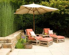 planter des bambous patio