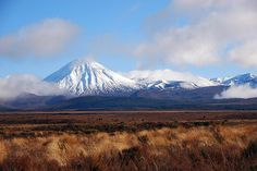 Central Plateau, North Island New Zealand
