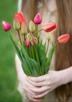 A bouquet of Tulips for you! Hand Flowers, Flowers For You, Tulips Flowers, Cut Flowers, Daffodils, Spring Flowers, Planting Flowers, Beautiful Flowers, Holding Flowers