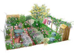 Comment créer un jardin de parfumeur ? Profitez de doux parfums et de senteurs florales cet été grâce à cet aménagement de jardin proposé par nos experts.