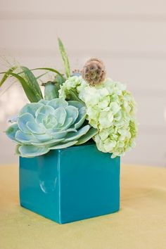 like using 'plants' instead of the usual flowery centre pieces. plus they last longer right?