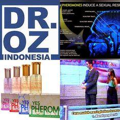 Dr Oz Indonesia Parfum Feromon Pria Dr Oz Indonesia Parfum Feromon Pria - Feromon diartikan sebagai zat yang dapat memberikan stimulan atau pesona serta daya tarik antar individu. Konon awalnya feromon ini ditemukan pada hewan sebagai cara untuk berkembang biak , melindungi dari musuh