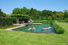 50 Amazing Natural Swimming Pools That Will Delight You pool landscaping 50 Amazing Natural Swimming Pools That Will Delight You Natural Swimming Ponds, Natural Pond, Swimming Pools Backyard, Ponds Backyard, Swimming Pool Designs, Pool Landscaping, Lap Pools, Indoor Pools, Pool Decks