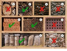 Nesting aids for wild bees – what to look out for? Bug Hotel, Wild Bees, Bee House, Puppet Crafts, Wood Bird, Cute Bee, Bonsai Garden, Garden Crafts, My Flower