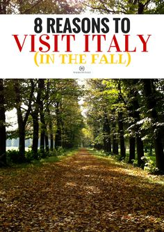8 Reason Why Autumn in Italy Is the Best Autumn is one of the best times to visit Italy. Find out the top 6 reasons to… Italy Honeymoon, Italy Vacation, Italy Trip, Italy Tours, Italy Information, Things To Do In Italy, Italy Travel Tips, Italy Holidays, Visit Italy