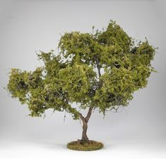 "This is a tutorial on ""How to make Trees"" I equate adding trees to a gaming table like adding candles on a birthday cake,it just doesn'. How To Make Trees, Crop Field, Model Tree, Wargaming Terrain, Miniature Trees, Tabletop Games, Miniture Things, Model Trains, Herbs"