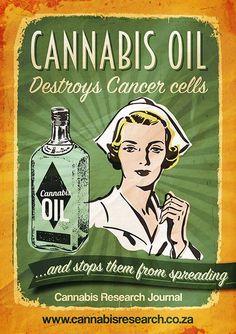 Cannabis Oil | Google #1Cure4Cancer