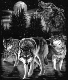 Wolf Pack Tattoos For Men