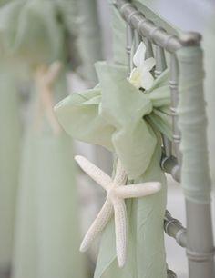 starfish and bows