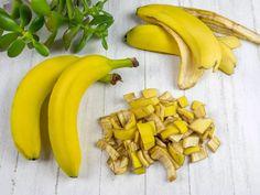 Hnojení růží, květin a zeleniny: Co z kuchyně jim svědčí? Fruit, Plants, Food, Gardening, Compost, Lawn And Garden, Essen, Meals, Plant