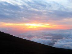 Haleakala Gold, Maui.
