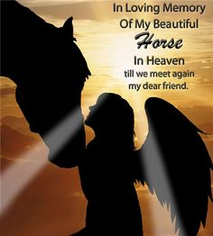 My horse is in heaven with the angles All The Pretty Horses, Beautiful Horses, My Best Friend, Best Friends, Lost Quotes, Heaven Quotes, I Believe In Angels, Pet Loss, Horse Love