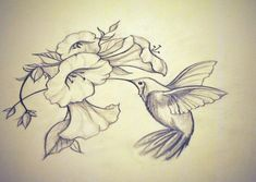Beautiful Humming Tattoos Drawing Gallery - Hummingbird Drawings Recent Photos The Commons Getty Collection Hummingbirds Bing Humming Bird Tattoos Awesome Drawings Projet Reserve Tattoo Colibris. Bird Tattoos Arm, Bird Tattoo Back, Black Bird Tattoo, Love Tattoos, Beautiful Tattoos, Tatoos, Hand Tattoos, Hummingbird Sketch, Hummingbird Tattoo