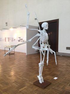 林宗将さんの卒制素晴らしい。RT @studiocorvo: 昨年話題になった阿修羅骨格像作者の新作。天使の骨格像らしい。成安造形大学美術領域現代アートコース卒業制作。