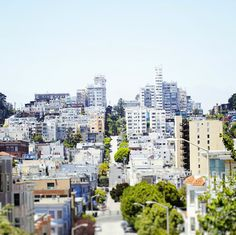 Cityscape of North Beach in San Francisco -  travel, city, modern home decor, fine art photography- City Life in San Francisco