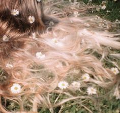 The lonely meadows and Daisies in my hair...