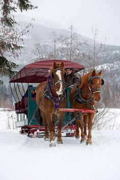 Sleigh ride at Nicklaus North. by GoWhistler, via Flickr #whistler #robpalmwhistler  #outdoor sports
