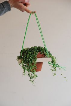 DIY Hanging Planter | Measure and hang your planter