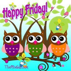 Owls #owls #colourful #fridays #zazzle #happy