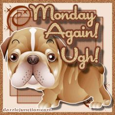 Monday Again! Monday Morning Greetings, Good Morning Saturday, Good Morning Everyone, Good Morning Good Night, Monday Blessings, Morning Blessings, Monday Again, It's Monday, Mondays