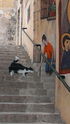 Step art in Mellieha, Malta l Malta Direct will help you plan an incredible getaway