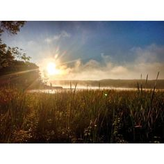 Sunrise out over 100 Acre Pond (Mendon Ponds Park, NY) early Sunday morning during @TrailsROC!'s #MM99 race! Gorgeous. #trailsroc #TrailRunning #ultrarunning #roc #traillife  #upperrightusa #familylife #northeastisbeast #roc #gogetit #beastcoast #neverstop #gooutside #MakeAdventure #GetHealthy #wildernessculture #rei1440project #meetthemoment #doepicshit #benmurphy #highsnobiety #runsteepgethigh #hoodbyair #lote #supremenyc #blvck #fitfluential #furtherfasterforever #dirtbagrunners