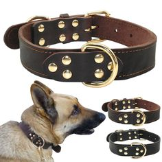 High-Quality Top Grade Black Genuine Leather Working Dog Pet Training Collars Heavy Duty For Medium and Large Dogs Brand Name: DogPattern: SolidMaterial:. Leather Dog Collars, Pet Collars, Training Collar, Dog Training, Pitbull, Interactive Cat Toys, Pet Dogs, Pets, Dog Store