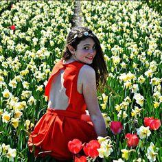 Un nouvel article est sur le blog n'hésitez pas à me dire ce que vous en pensez!  #flowers #paysbas