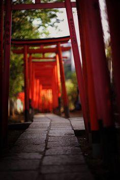 Nezu shrine, Tokyo, Japan 根津神社