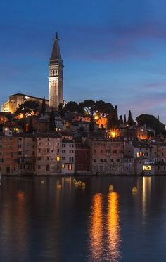 Overlooking the old town of Rovinj, Istria, Croatia   by fritschi1256